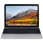 Apple MacBook MJY32LL/A