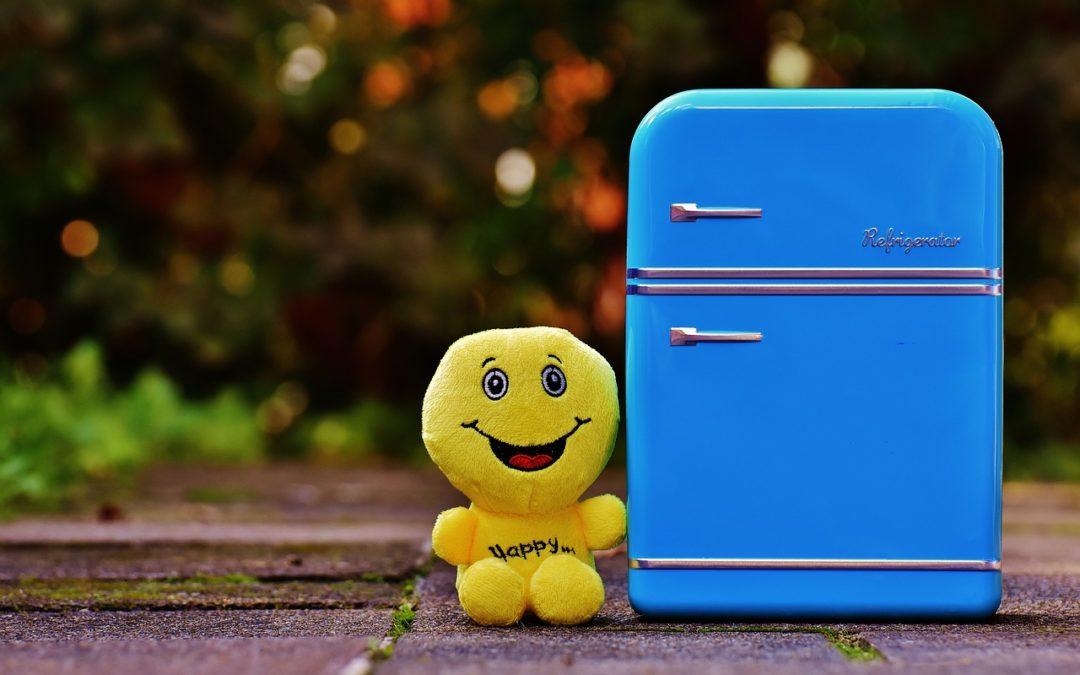 Nejlepší ledničky pro menší rodinu do 8 000 Kč