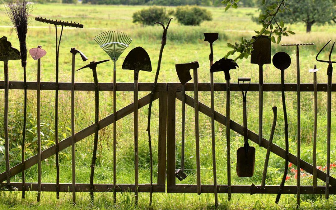 Jak správně vybrat zahradní nářadí