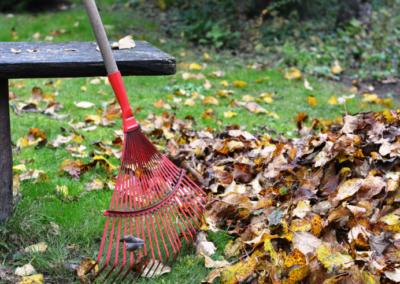 Hrabat či nehrabat listí na zahradě?