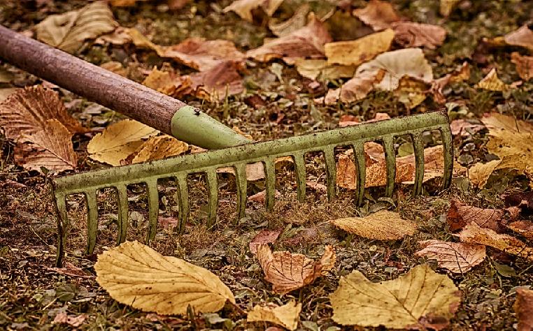 Jak na podzimní úklid zahrady? Na těchto X bodů nezapomeňte