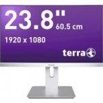 Terra 2462W