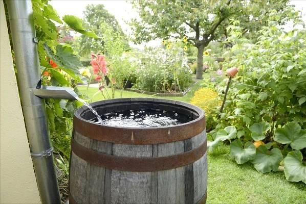 Jak vybrat retenční nádrž pro sběr dešťové vody