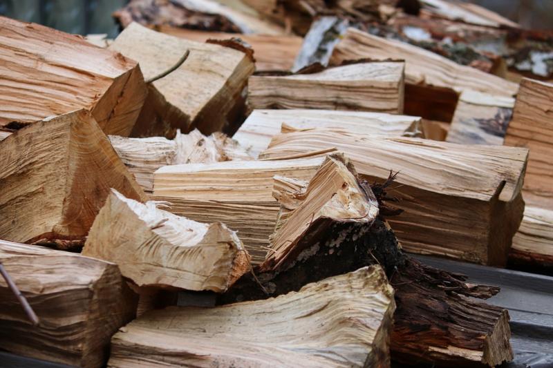 Jak vybrat štípačku na dřevo