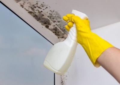 Jak odstranit plíseň z plastových oken