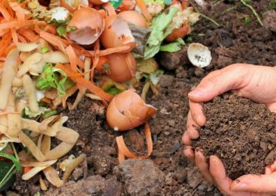 Jak vyrobit přírodní hnojivo ze surovin, které máte běžně doma