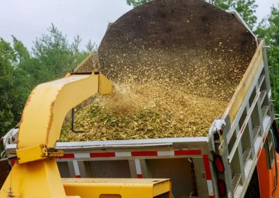 Zbavte se větví a zahradního odpadu efektivně. Drtič větví vám ušetří práci
