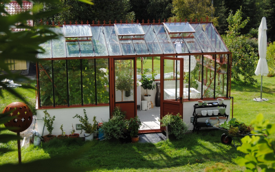 Co zasít do skleníku, abyste na podzim sklízeli